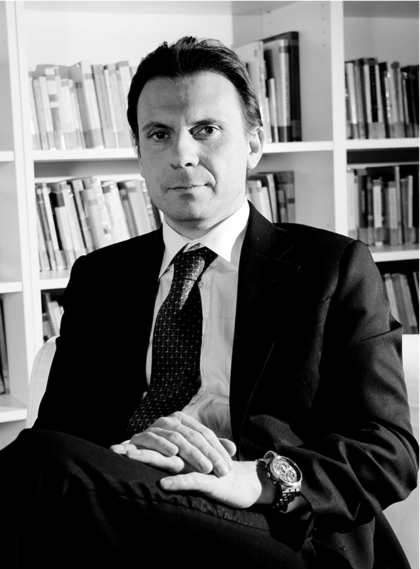 Incarichi Professionali e Pubblici Marco Ginanneschi